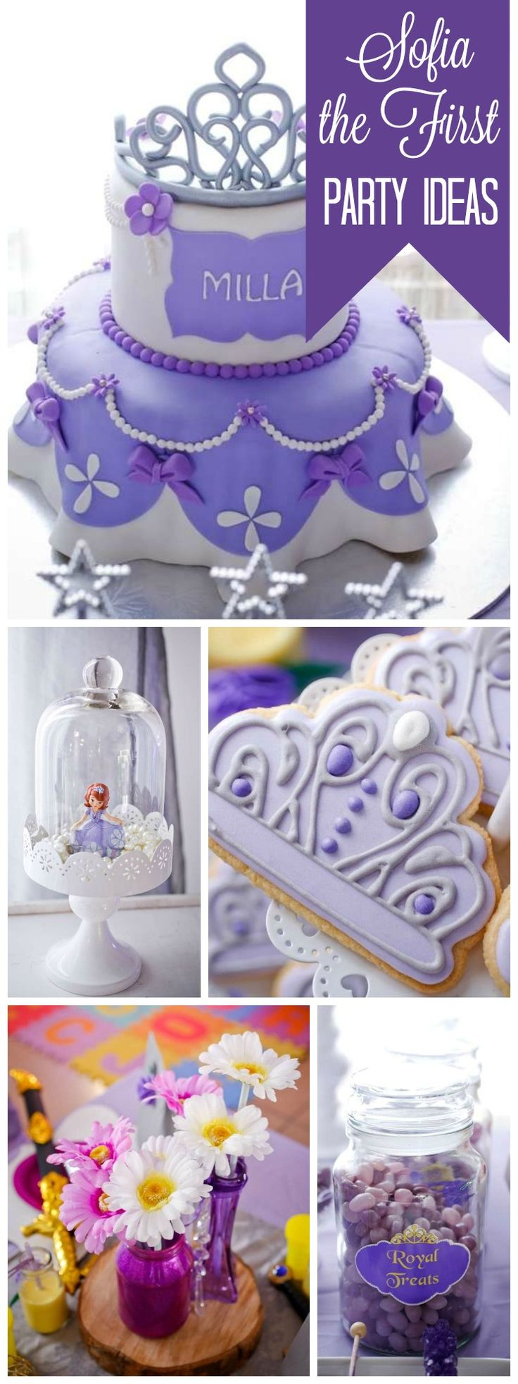 The 71 Best Images About Sofia The First Party On Pinterest