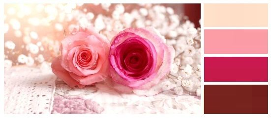 Συνδυασμοι Χρωματων  Ρομαντικές & Τολμηρές Αποχρώσεις συνδυάζονται Αρμονικά