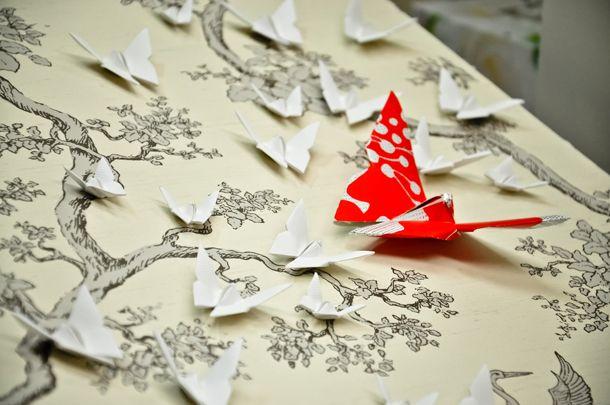 Butterfly beauty by Short Story