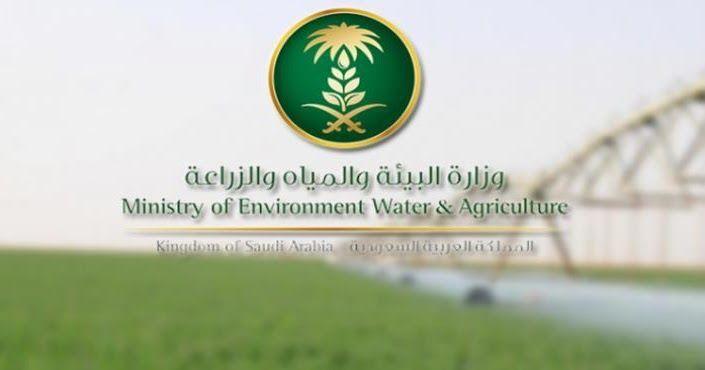 البيئة تطلق برنامج حصر لجمع بيانات الأنشطة الحيوانية والزراعية بالمملكة أطلقت وزارة البيئة والمياه وزارة البيئة والمياه وا Agriculture Environment Water