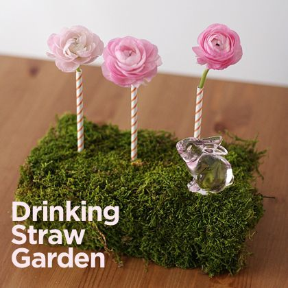 """drinking straw garden...change the flower toppings to cotton candy and this would be SOOO cute for """"The Lorax"""" themed party!!"""