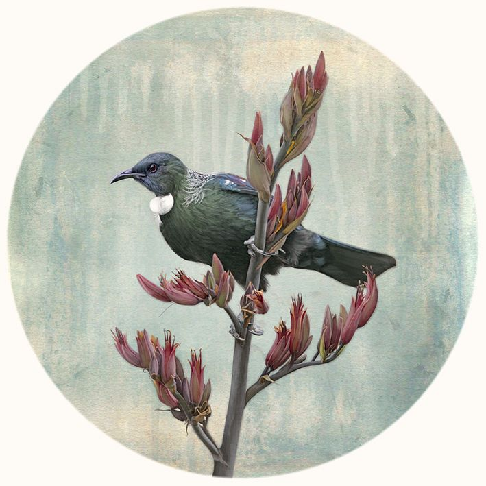 """The New Zealand native Tui bird. """"Tui Watchtower"""" - photo by Nathan Secker, creative edit by Janie Secker. Raw + Design. Prints and cards available from www.imagevault.co.nz"""