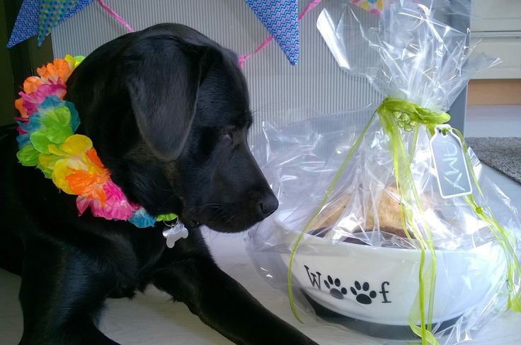 Amy's eerste verjaardag