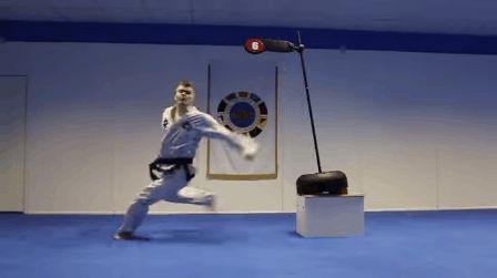 Tai Chi, Kung Fu, Wing Chun, Swords