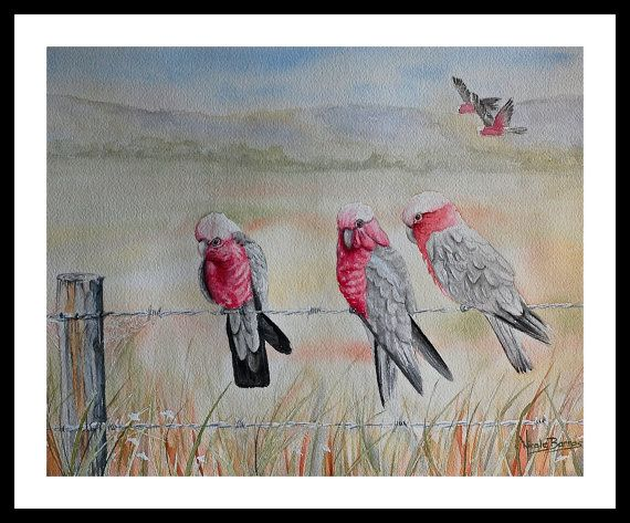 Galahs Painting PRINT Watercolour Painting Home by NicoleBarrosArt