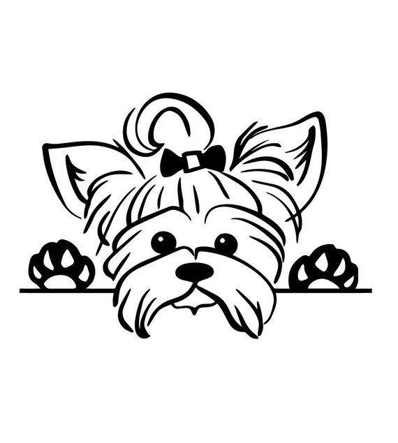 Yorkshire Terrier, Welpe spähen, Yorkie Hund Svg-Dateien, Dateien schneiden, …   – Yorkshire Terrier