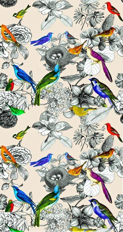Home Tweet Home - Birds Nesting Pattern by CSERA | society6.com #art #birds