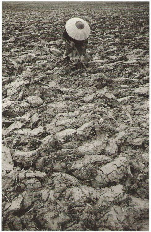 Life in Tsugaru village by Ichiro Kojima (1924-1964, Japan)