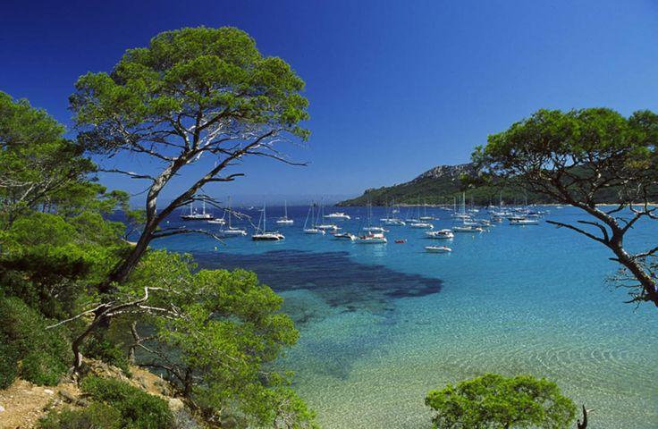 L'île de Port-Cros (Var)