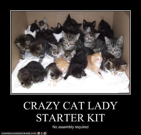 Thats me...CraZy Cat Lady