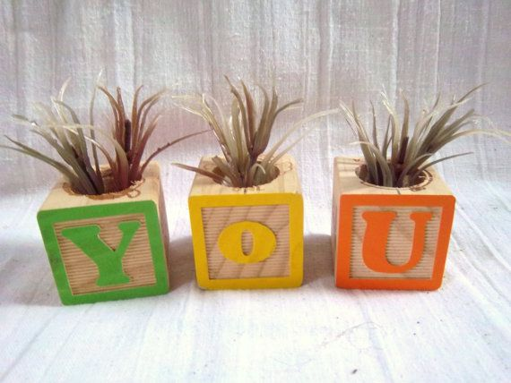 Alphabet Block YOU Repurpose/Upcycle Air Plant by southerntouches