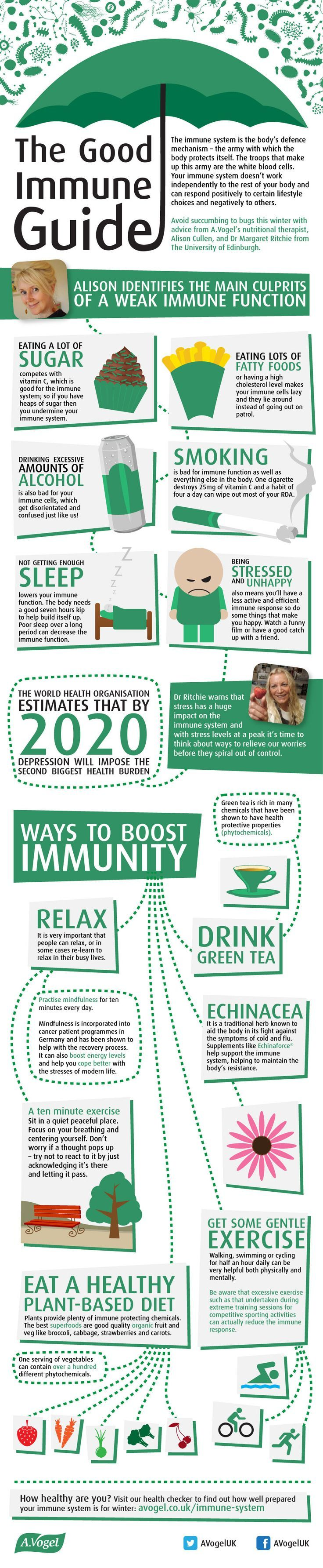 The Good Immune Guide: Tips To Creating A Stronger Immune System. Echinacea should not be used by people with HIV.