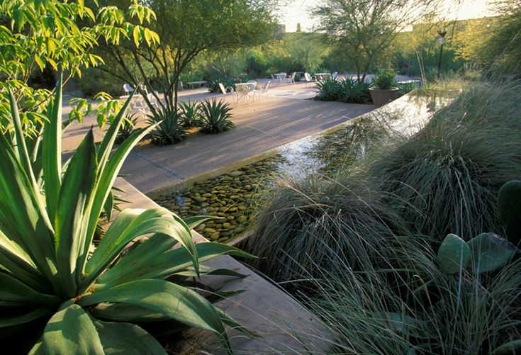 1000 images about desert garden water feature on for Ten eyck landscape architects