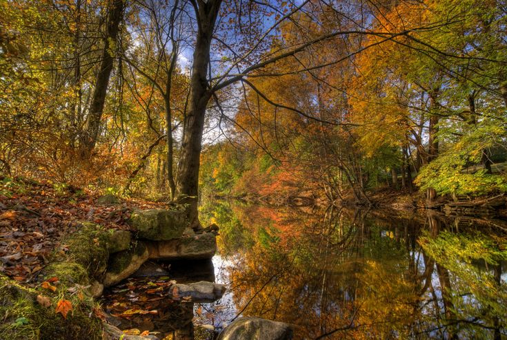 Reflections on the river - Califon New Jersey