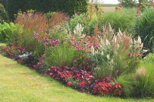 Zdjęcie numer 1 w galerii - Trawy ozdobne. Z jakimi roślinami najlepiej wyglądają trawy