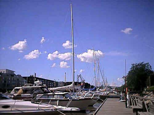 Guest Harbour