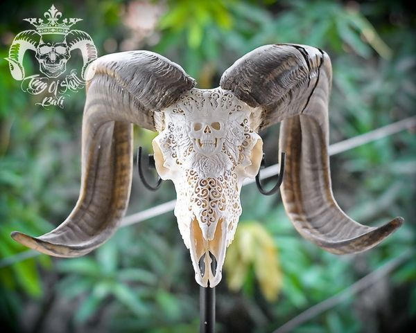 Hand Carved Ram Skull with King Of Skull and Natural FinishFind this skull on Etsy