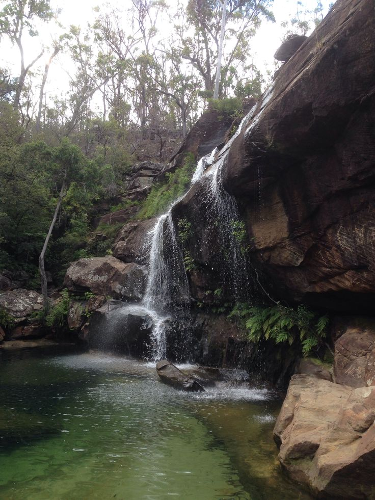 Woolgoolga, NSW, Australia