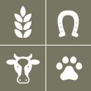 Animal and Agricultural Science Curriculum for 4H Clubs.