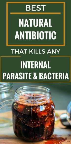Best Natural Antibiotic That Kills Any Internal Parasite And Bacteria