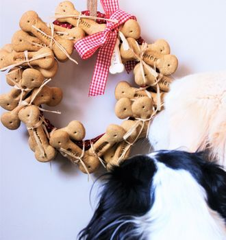 Personlised Dog Advent Calendar