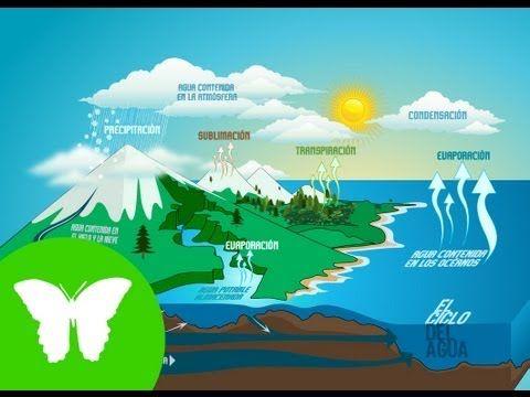 ▶ La Eduteca - El ciclo del agua - YouTube