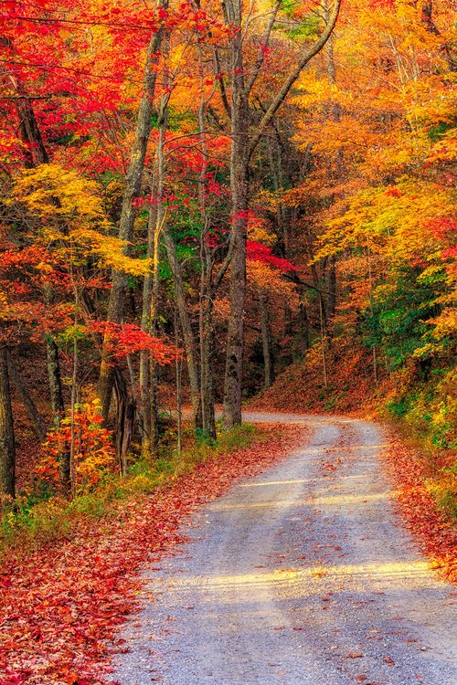 Fall .... When the hustle and bustle comes to a halt and we can all slow down for a little more Family time! <3                                                                                                                                                                                 Mehr