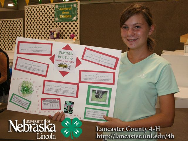 4-h home improvement project ideas