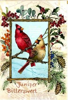 Awesome Juniper Cardinals Winter Decorative Mini Garden Flag