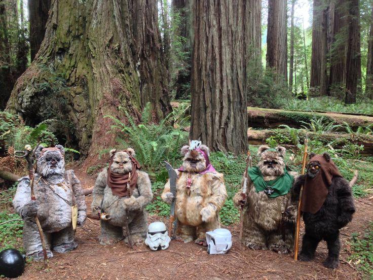 Lots of wonderful movie scenes have been filmed in Humboldt County ...