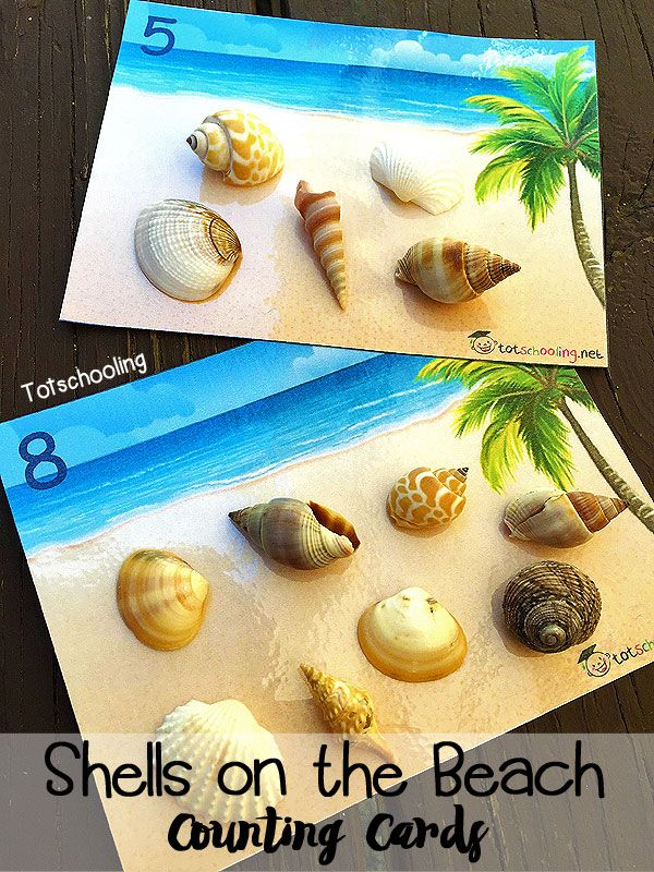 Use these free printable counting cards with sea shells from the beach, for a hands-on counting activity that teaches number recognition and one to one correspondence.