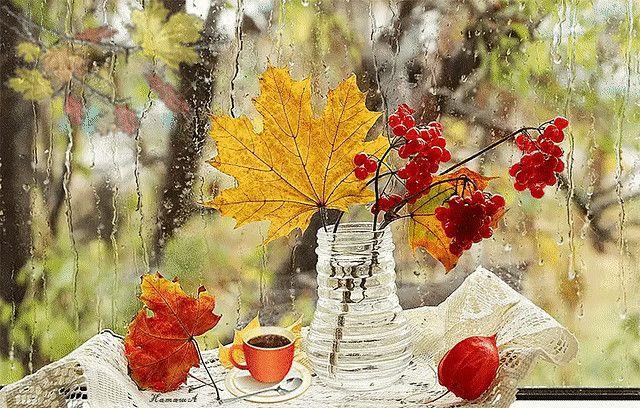 Ya Prishlyu Tebe Osen V Obychnom Pochtovom Konverte Ok Ru Thanksgiving Photography Fall Colors Painting