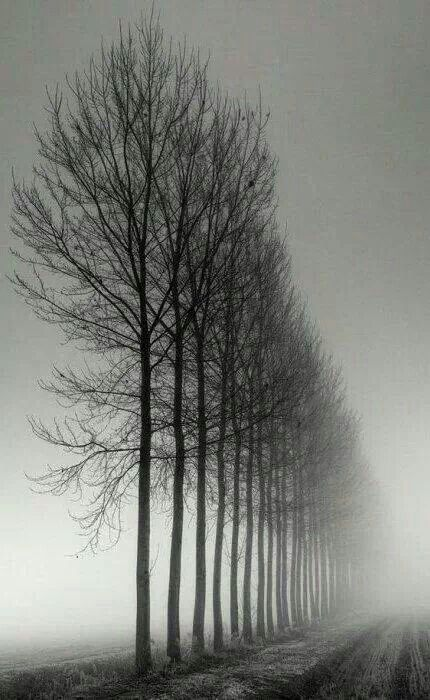 Verstilde, desolate sfeer