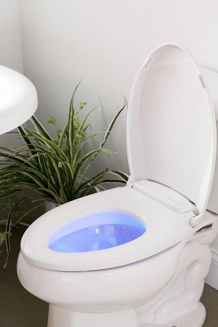 Bathroom Accessories Bathroom Decor Bathroom Design Ideas Bathroom Accessories Bathroom Bathroom Decor