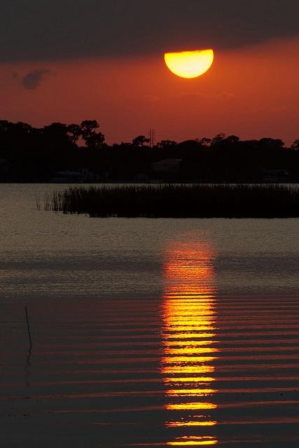 Lake Tarpon Sunset ~by Waldek & LidkaSunsets Bi, Beautiful Universe, Waldek Lidka, Sunrise Sunsets, Tarpon Sunsets, Lakes Tarpon, Amazing Photos, Bi Waldek, Sunrises Sunsets