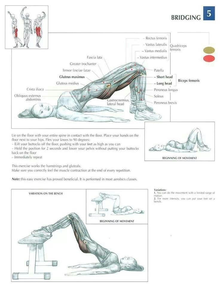 11 best Exercises images on Pinterest   Workouts, Work outs and Crunches