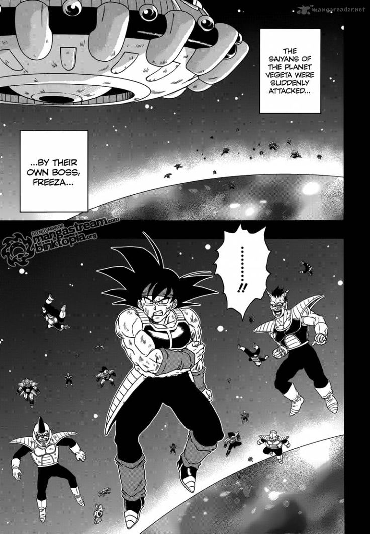 Dragon Ball: Episode of Bardock Manga. Its basically like the episode of bardock special. But its still really cool.#Wolfthekid