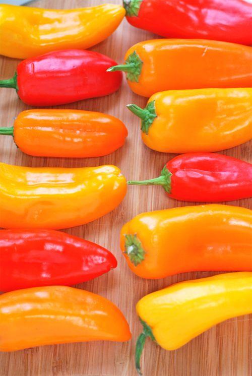 bhut jolokia chili in bangalore dating