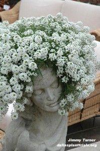 Nice head of hair!