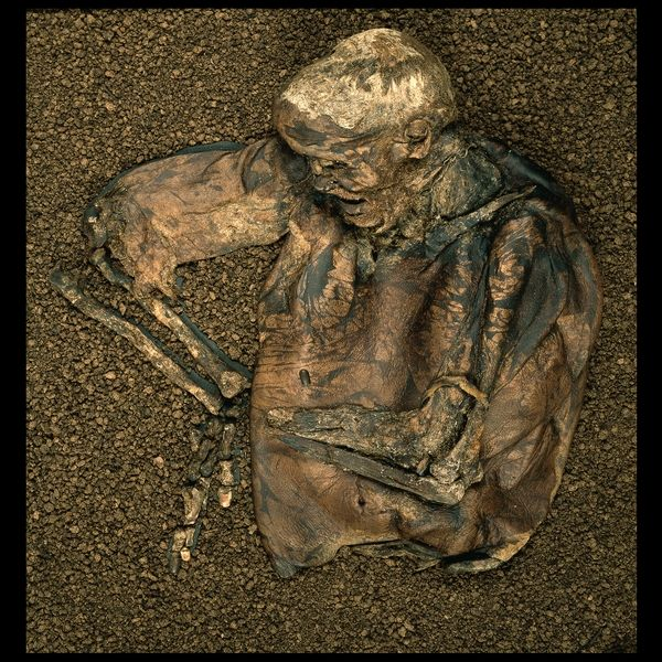 The Lindow Man, dated to between 2 BCE and 119 CE and found in a peat bog in Chesire, England in 1984. Now on display in the British Museum.