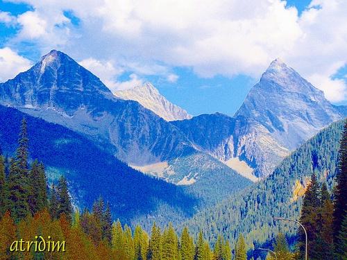 Revelstoke & Glacier National Parks, British Columbia, Canada