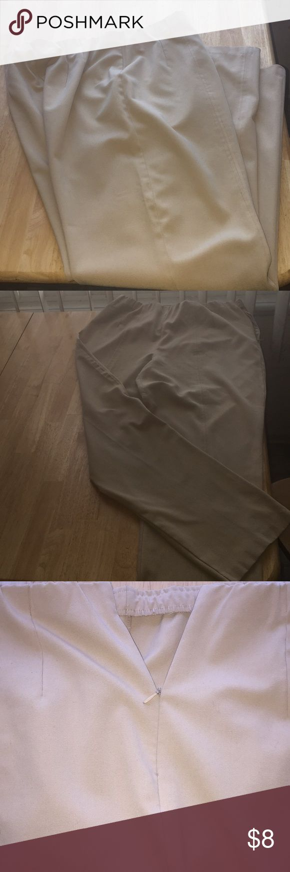 Ladies Dress Slacks by Sag Harbor Nicely fit dress slacks by Sag Harbor.  Pleated in front and back with a side zipper.  Elastic waistband.  Soft and comfortable.  Slightly discolored.  Size 14.  62% Polyester, 32% Rayon, 6% Spandex. Sag Harbor Pants Trousers