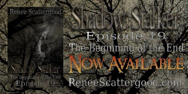Weekly Fantasy Fix: Shadow Stalker: The Beginning of the End (Episode ...