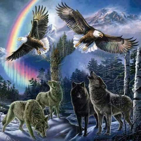 Pin By Kregory Scott On Native American Wolf Pictures