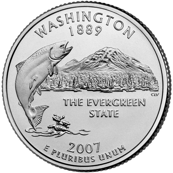 Best Fifty State Quarters Images On Pinterest States - Rare us state quarters