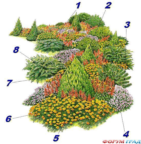 Зимой и летом одним цветом: великолепный сад из хвойных пород деревьев и кустарников - Страница 2 - Высокие и низкие, могучие и стройные, деревья разнолистные, внимания достойные. Весной деревья радостны, печалятся – осенние, они имеют разное порою настроение - Форум-Град