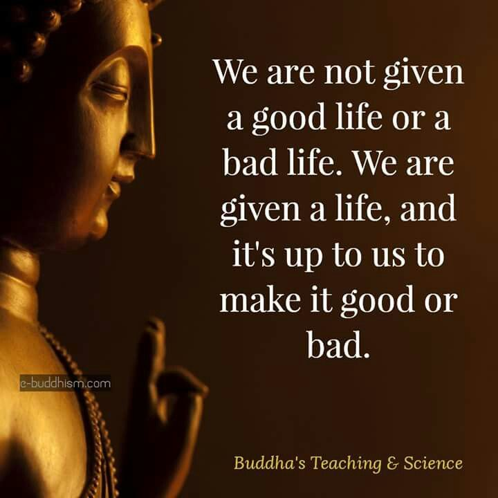 Best 25+ Buddhist Wisdom Ideas On Pinterest