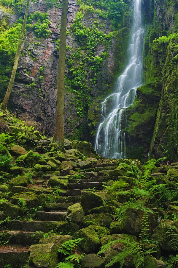 Way up by Levin Dieterle, via 500px; Burgbach Waterfall, Black Forest, Germany
