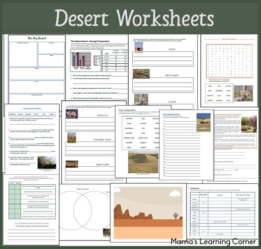 Desert Worksheet Packet For 1st 3rd Graders Ultimate