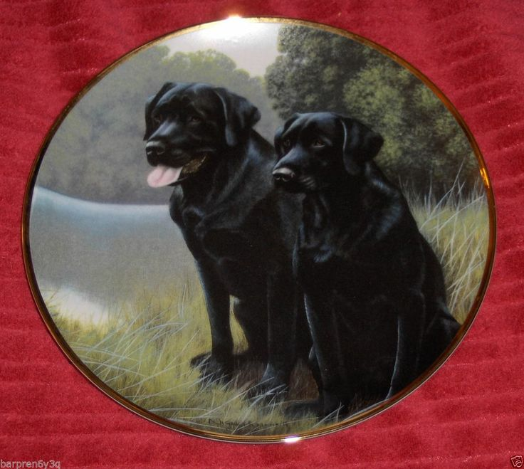 V. Labrador Retriever Franklin Mint Plate Nigel Hemming Sporting Companions Dish